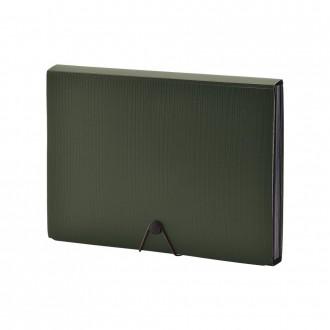 Folder na dokumenty Smart Fit 13 kieszeni zielony