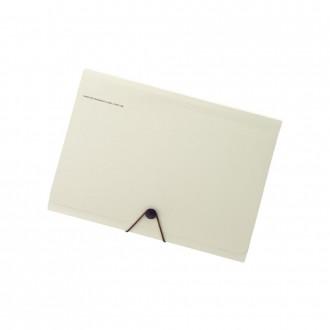 Folder na dokumenty Smart Fit 13 kieszeni beżowy